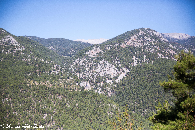 Taurus Bjergene